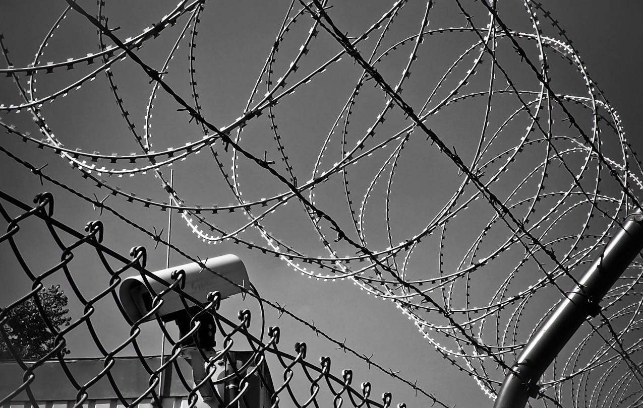 image of barbed wire fence